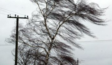 ветер и осадки