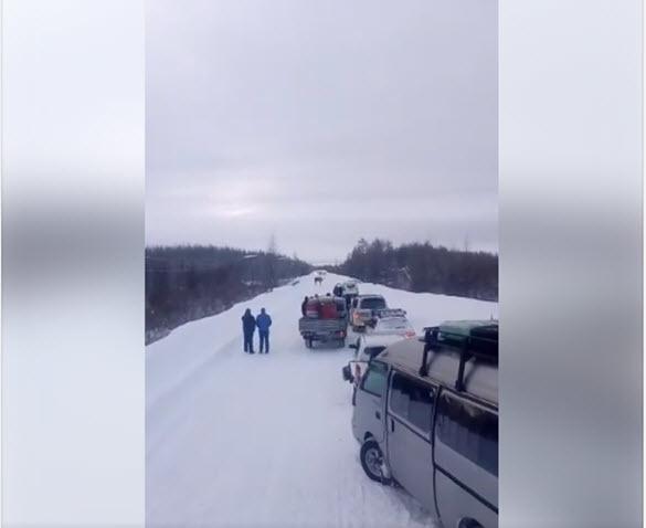 2018-02-02_14-25-44 В Якутии сохатый преградил дорогу и кидался на машины