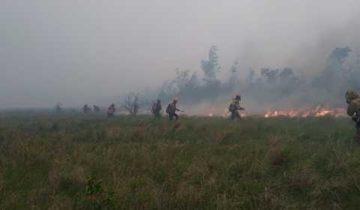 лесные пожары, якутия