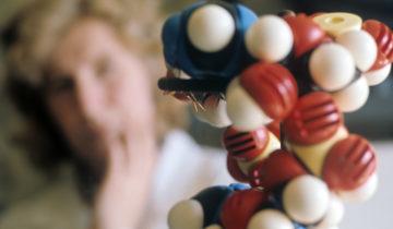 625064 01.01.1976 Модель нуклеиновой кислоты. Институт органического синтеза АН Латвийской АССР. С. Соловьев / РИА Новости