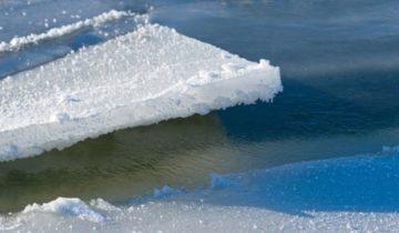 льдина, большой ляховский, оленеводы, якутия