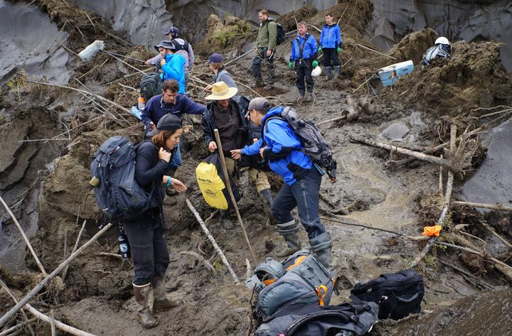 Членами совместной экспедиции Академии наук Якутии и Мичиганского университета были найдены интересные палеонтологические находки