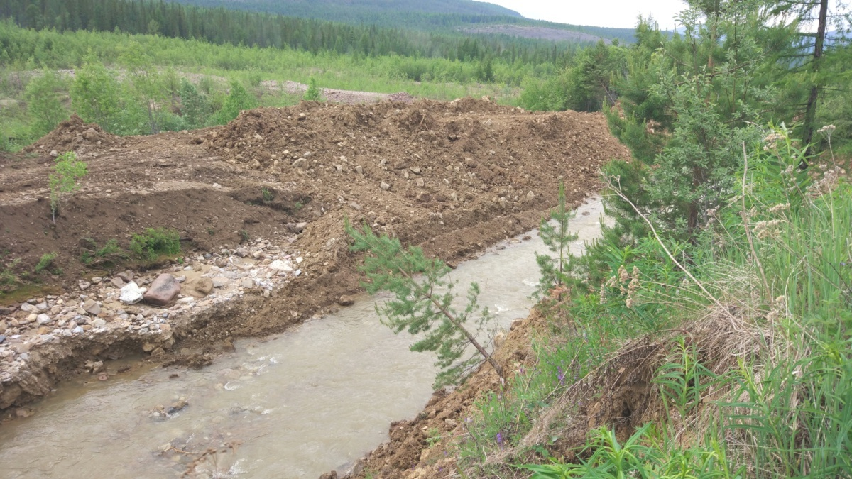 Восстановленный руслоотвод в средней  части долины р.Талая