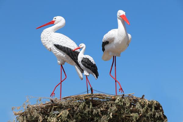 Территорию исправительных колоний в Якутии украсили фигуры птиц