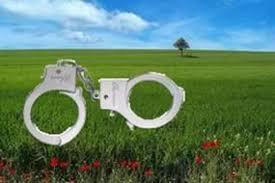 наручники змеля