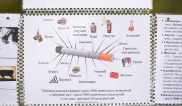 149138_Moleben_za_trezvosty_Chelyabinsk__tabak_sigareti_250x0_3233.2161.0.0
