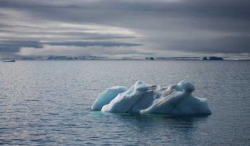 Фото предоставлено Национальным парком Русская Арктика © М. Меньшикова