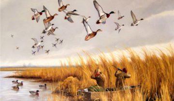 охота утки