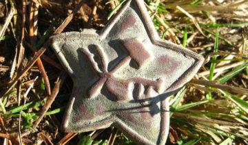 Звезда из Ржева
