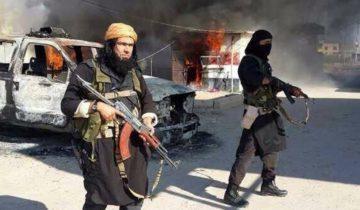 Салафиты террор
