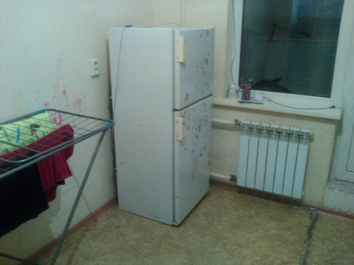 Знакомые привезли Свете холодильник