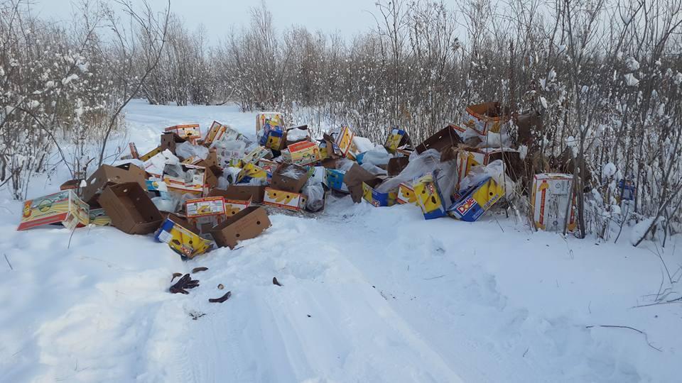 27752181_2027418280846667_1450840597585303665_n Антон Васильев раздает бананы, обнаруженные на Зеленом лугу в Якутске
