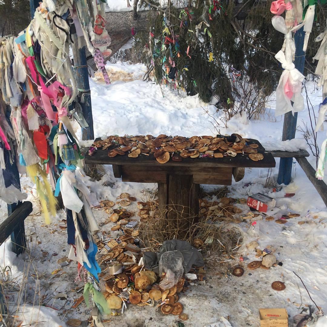 SHaman-Derevo Фотофакт: В Якутии возле шаман-дерева устроили помойку