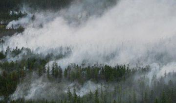 лесные пожары, якутск