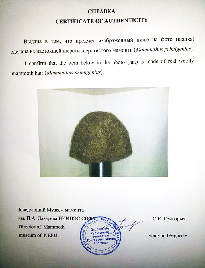 Woolly mammoth hair hat certificate